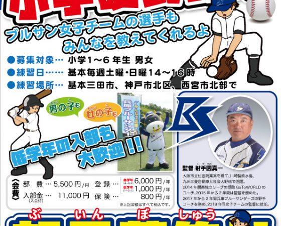 小学硬式野球募集チラシ
